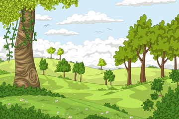 Wall Mural - Cartoon summer landscape with trees. Vector illustration with separate layers.