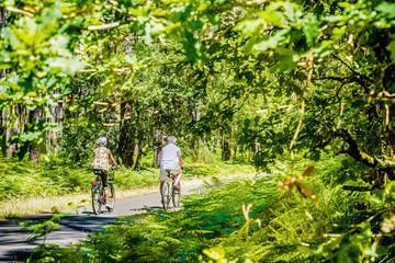 couple de retraités se promenant en vélo dans une magnifique forêt