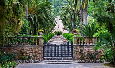 Alley in the Alfabia Gardens , Mallorca, Spain