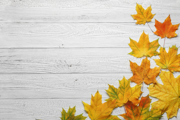 Autumn border with leaves on white wood background.