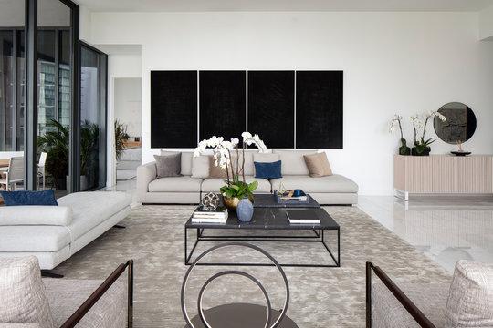 Living Room of Modern Miami apartment Interior