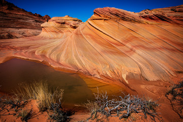 Wall Mural - The Wave in Vermillion Cliffs, Arizona, USA