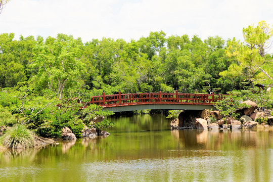 Morikami Japanese Botanical Garden, Delray Beach, Florida, includes lakes, bridges and other Asian artifacts among the lush foliage backdrop