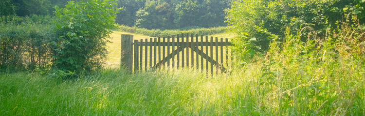 Wooden fence door fron of meadow
