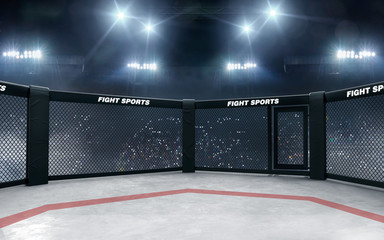 3D render MMA arena. MMA octagon cages.