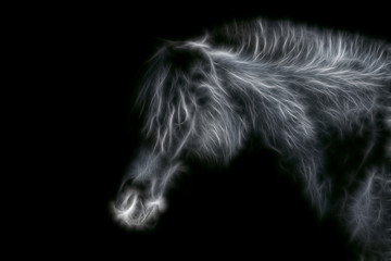 Fractal image of a homemade black horse close-up on a contrasting black background