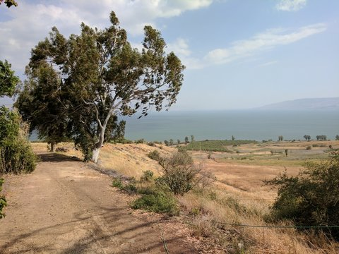 The Mount of the Beatitudes, Galilee Israel