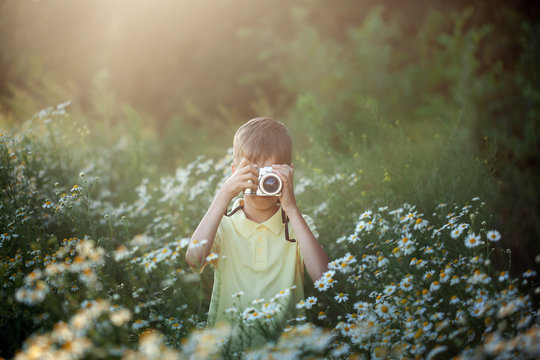 Cute boy photographer shoots on camera in nature. Kid takes a photo in the camomile flowers field.