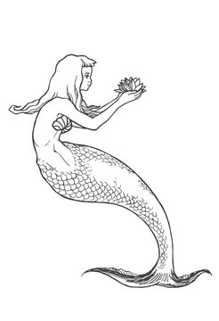 Vector hand drawn illustration of mermaid isolated on white. Black and white sketch of nixie