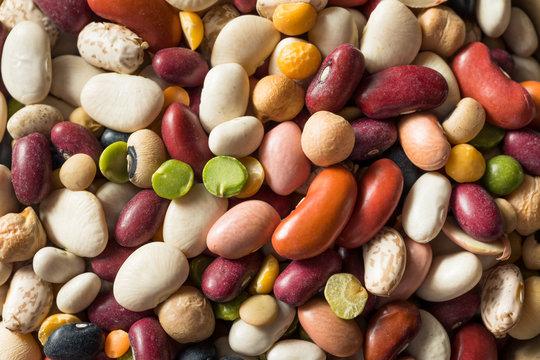 Dry Organic Assorted Bean Mixture