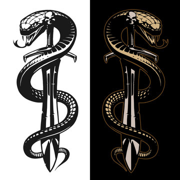 Snake and sword tattoo illustration