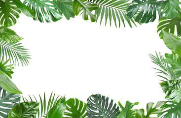 Frame made of fresh green tropical leaves on white background. Space for design Wall mural