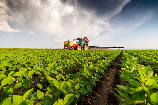 Spraying pesticides at soy bean fields