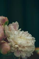 Fotobehang Peony flowers