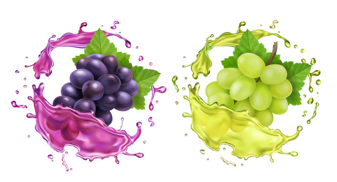Red and white wine grapes and juice splash. Realistic vector icon set