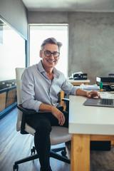 Mature businessman at his desk