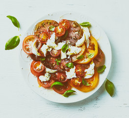 Mixed tomato salad with mozzarella cheese and basil leaves. Mediterranean cuisine