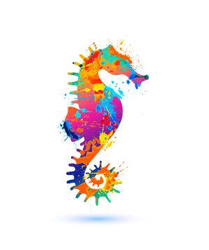 Seahorse silhouette symbol of splash paint