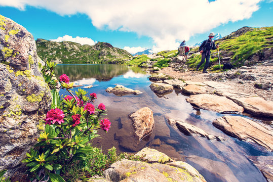 Charming mountain landscape with rhododendron and tourists at the lake in the French Alps