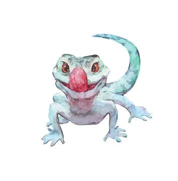 funny green lizard watercolor illustration