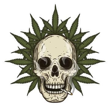 Rastaman skull with cannabis leafs. Vector illustration.
