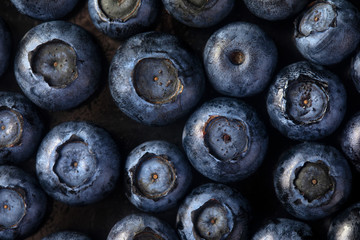 A fantastic blueberry background. A macro picture of dark and saturated blueberries. Refreshing antioxidant berries. Juicy summer berries