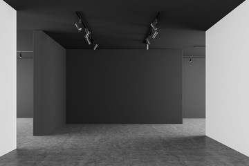 Empty gray and white gallery interior Fototapete