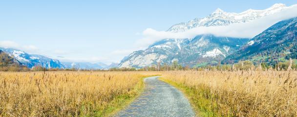 Autumn road. Switzerland, Uri