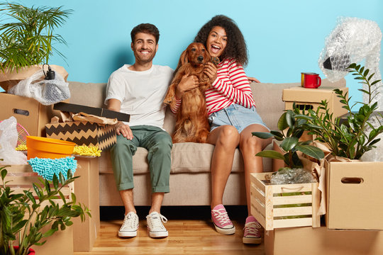 Relocation, renovation and removal concept. Happy diverse couple sit on sofa with favourite dog, have break on moving day, busy unpacking, have mess in new flat, many packages, remove to own house