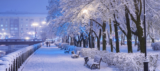 Amazing winter night landscape of snow covered bench among snowy trees and shining lights during the snowfall. Artistic picture. Beauty world. Panorama