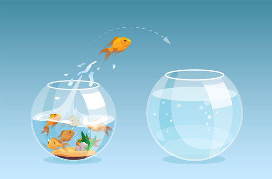 Vector of a goldfish jumping out a fishbowl to another aquarium