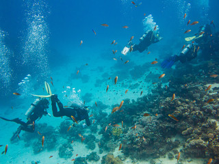 Scubadiving in Red Sea, Egypt, Sinai peninsula