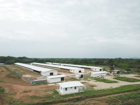 Aerial view of a modern Poultry facility in a rural area of Panama