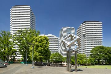 Fototapete - 埼玉県 川口西公園