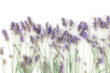 Foto auf Leinwand Blumen A fresh bouquet of blooming lavender flowers, shot from above on a white background with copy space
