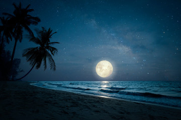Beautiful fantasy of landscape tropical beach with silhouette palm tree in night skies and full...