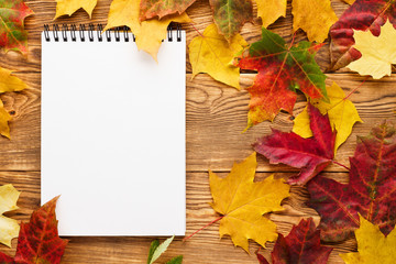 Red and yellow maple leaves around empty notebook. Wall mural