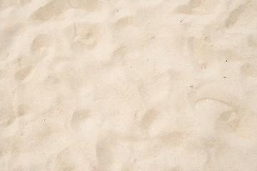 Wall Mural - Beach sand texture background