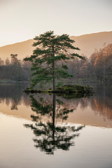 Poster Salmon Beautiful landscape image of Tarn Hows in Lake District during beautiful Autumn Fall evening sunset with vibrant colours and still waters