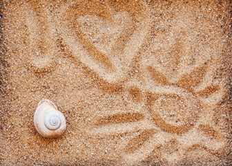 Sea shells with sand as background -