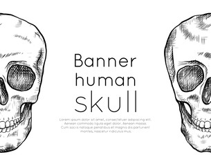 Horizontal banner with drawing of human skull with hatching and place for text. Front view. Contour art. Black and white engraving template for articles, postcards and your design.