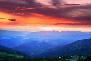 Wall Mural - Misty clouds in the mountains at sunrise