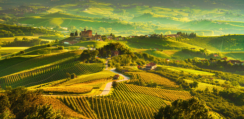 Spoed Fotobehang Honing Langhe vineyards sunset panorama, Grinzane Covour, Piedmont, Italy Europe.