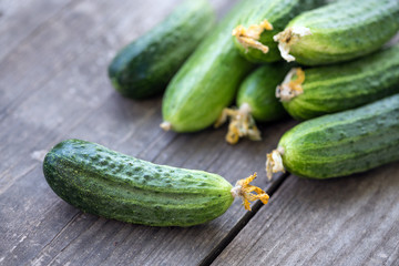 fresh young cucumbers