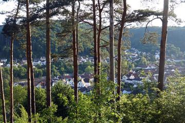 Fototapete - Rodalben im Pfälzer Wald