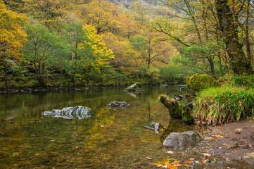 Autumn Colours on the River Derwent