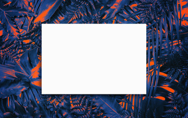 Fluorescent summer background, abstract summer frame&banner