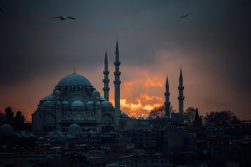 Suleymaniye Mosque at Sunset (Istanbul, Turkey)