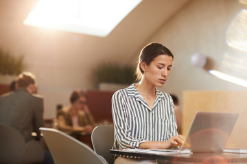 Warm-toned portrait of young businesswoman using laptop sitting at table in cafe, copy space