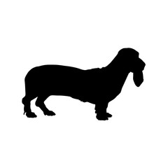 Basset Hound Dog, Side View Silhouette isolated On White
